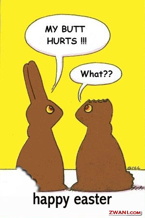 2chocolatebunnies.jpg