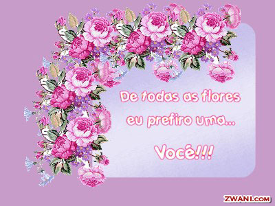 z-flores5.jpg