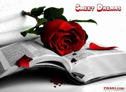 sweetdreamsbiblerose.jpg